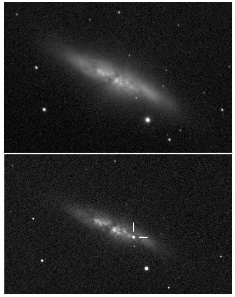 The supernova in M 82